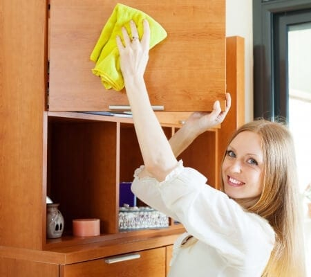Clearwater House Cleaning Tips for Dummies