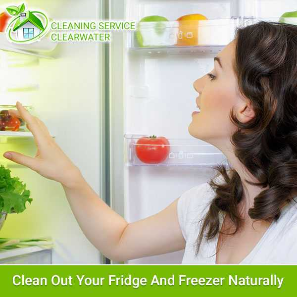 Clean Out Your Fridge And Freezer Naturally